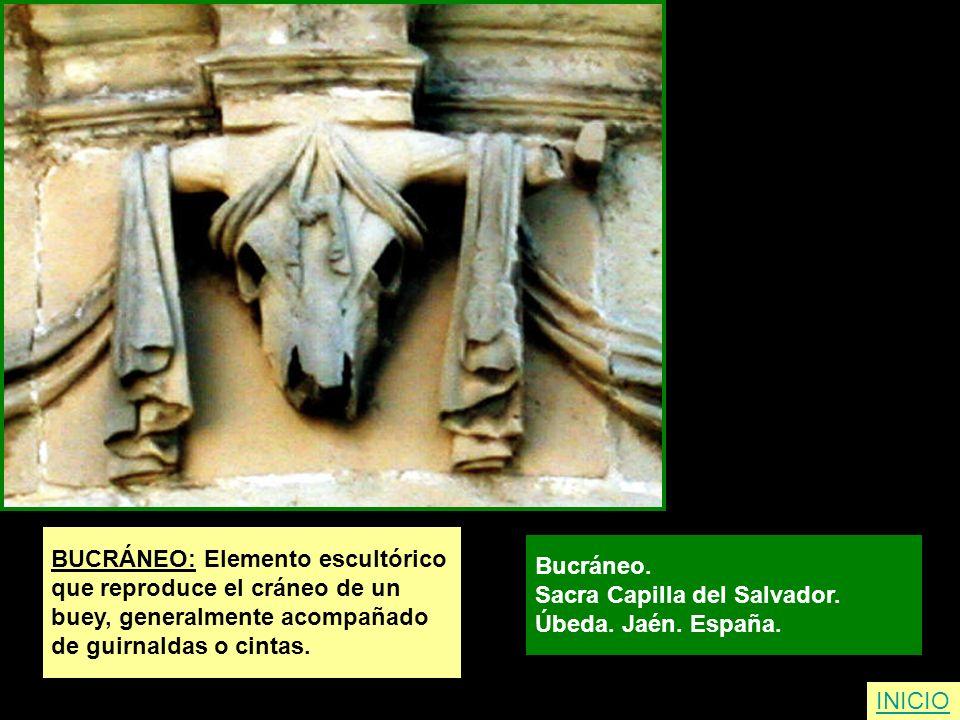 INICIO BUCRÁNEO: Elemento escultórico que reproduce el cráneo de un buey, generalmente acompañado de guirnaldas o cintas. Bucráneo. Sacra Capilla del