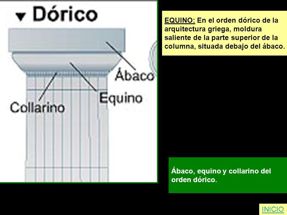 EQUINO: En el orden dórico de la arquitectura griega, moldura saliente de la parte superior de la columna, situada debajo del ábaco. Ábaco, equino y c