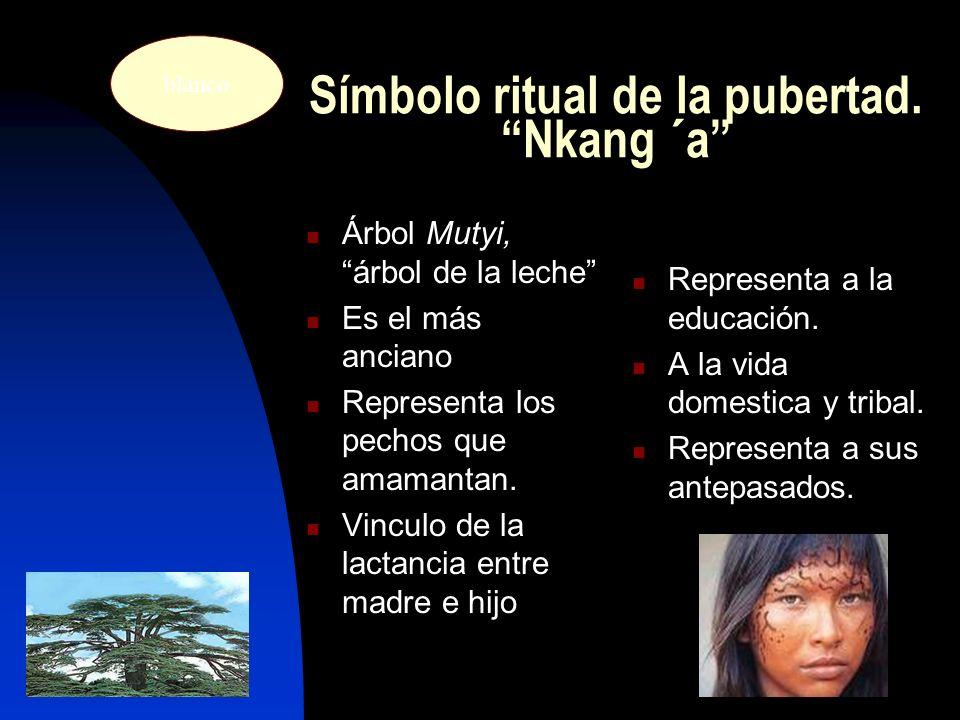 Símbolo ritual de la pubertad.Nkang ´a Árbol Mutyi,árbol de la leche Es el más anciano Representa los pechos que amamantan.