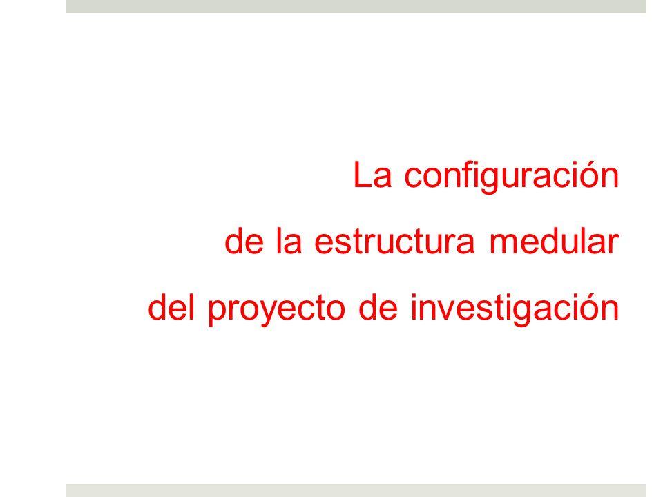 La configuración de la estructura medular del proyecto de investigación