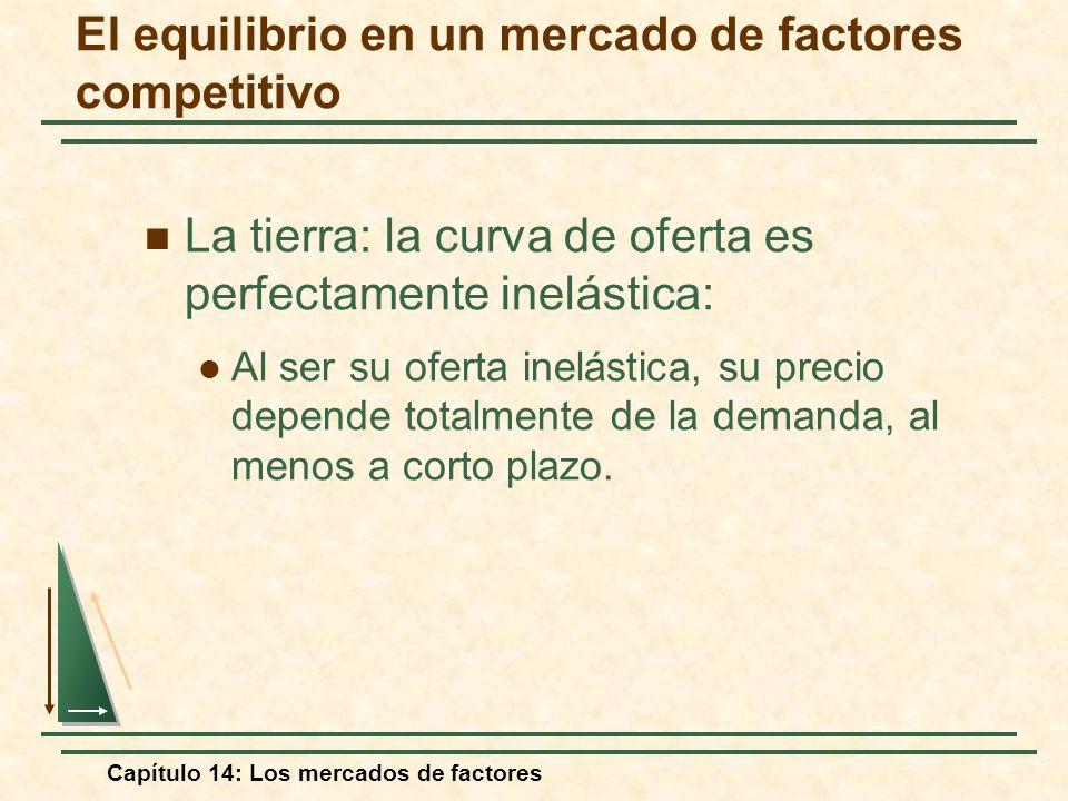Capítulo 14: Los mercados de factores La tierra: la curva de oferta es perfectamente inelástica: Al ser su oferta inelástica, su precio depende totalm
