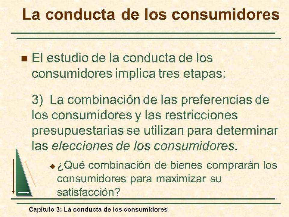 Capítulo 3: La conducta de los consumidores El estudio de la conducta de los consumidores implica tres etapas: 3) La combinación de las preferencias d