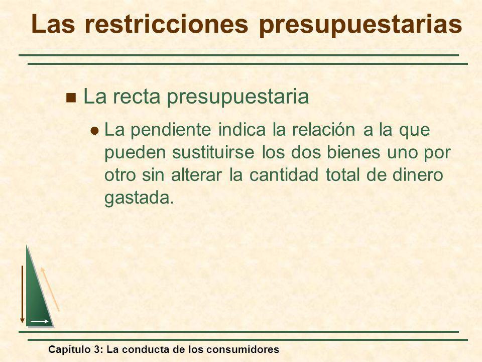 Capítulo 3: La conducta de los consumidores La recta presupuestaria La pendiente indica la relación a la que pueden sustituirse los dos bienes uno por