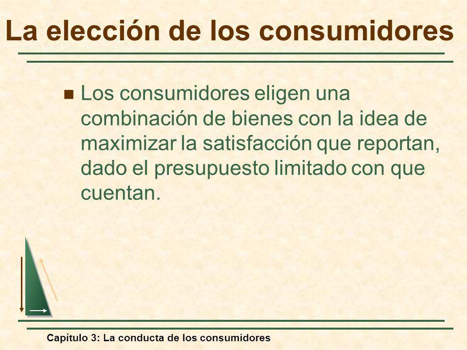 Capítulo 3: La conducta de los consumidores La elección de los consumidores Los consumidores eligen una combinación de bienes con la idea de maximizar