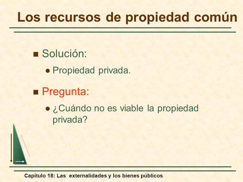 Capítulo 18: Las externalidades y los bienes públicos Solución: Propiedad privada. Pregunta: ¿Cuándo no es viable la propiedad privada? Los recursos d