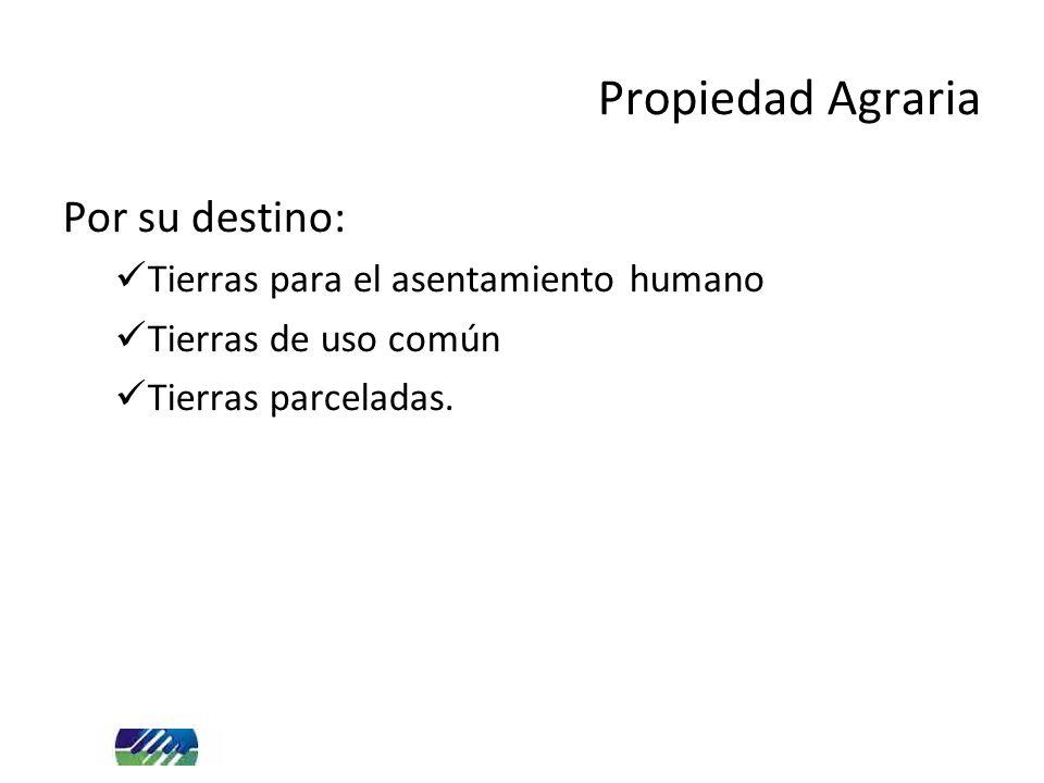 Por su destino: Tierras para el asentamiento humano Tierras de uso común Tierras parceladas. Propiedad Agraria