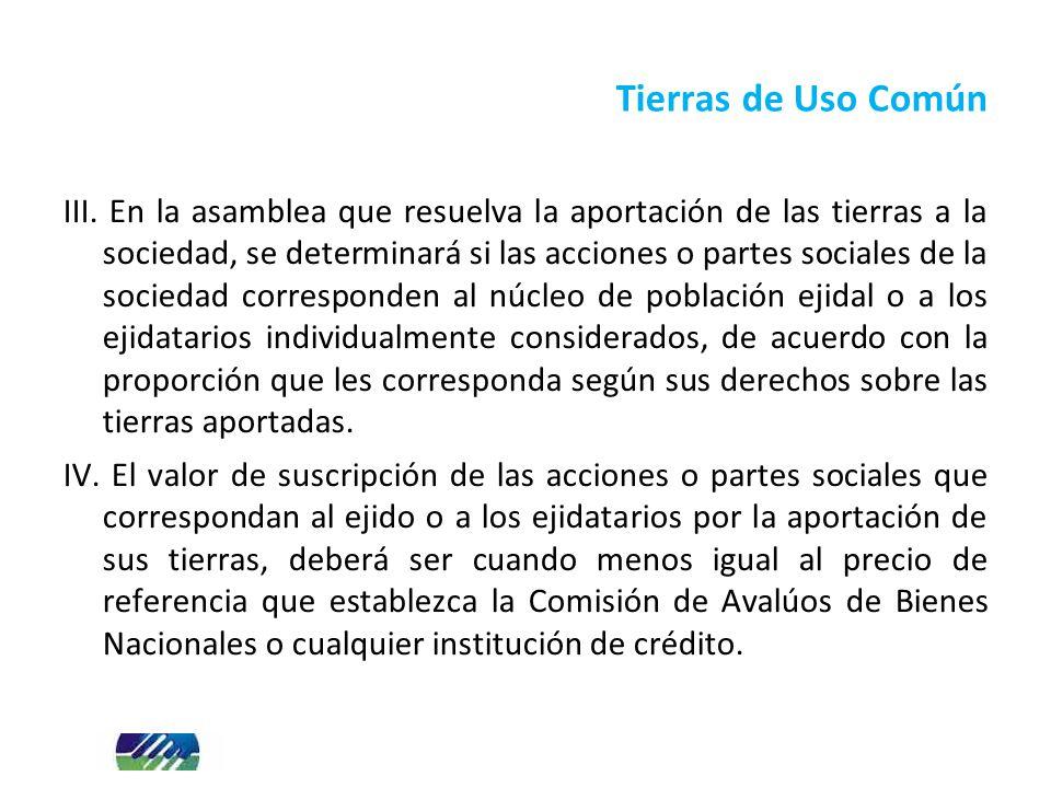 III. En la asamblea que resuelva la aportación de las tierras a la sociedad, se determinará si las acciones o partes sociales de la sociedad correspon