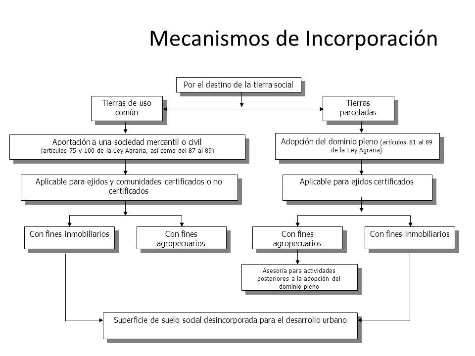 Por el destino de la tierra social Aportación a una sociedad mercantil o civil (artículos 75 y 100 de la Ley Agraria, así como del 87 al 89) Aportació