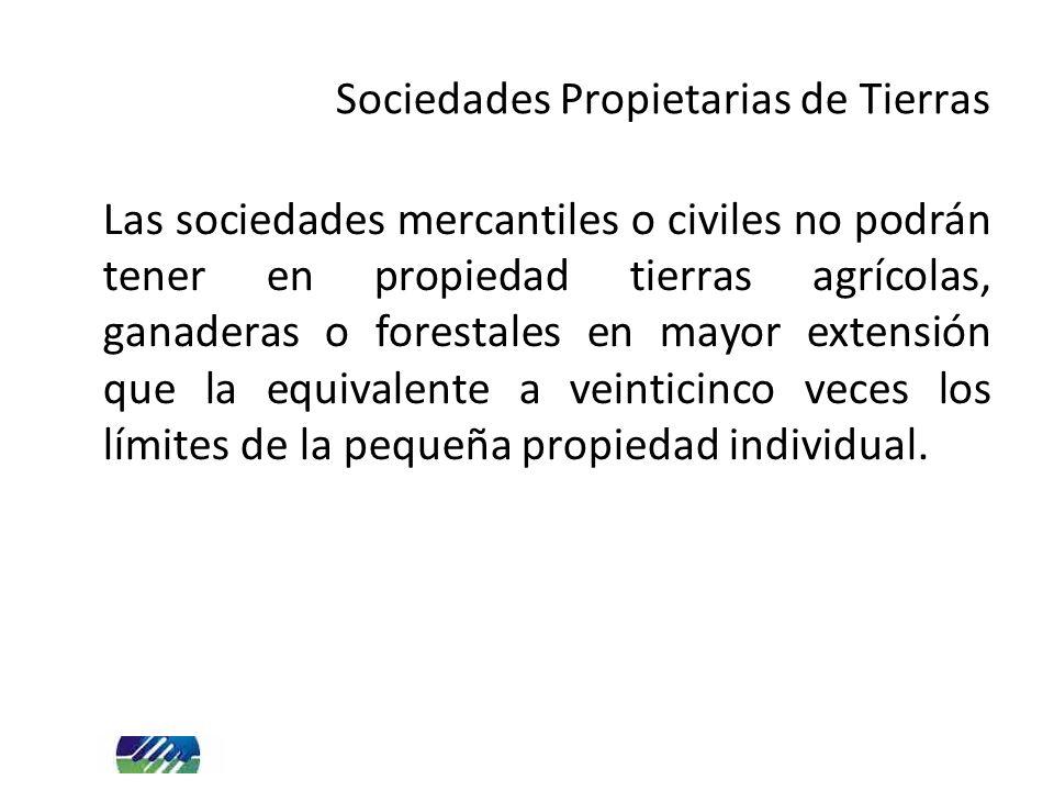 Sociedades Propietarias de Tierras Las sociedades mercantiles o civiles no podrán tener en propiedad tierras agrícolas, ganaderas o forestales en mayor extensión que la equivalente a veinticinco veces los límites de la pequeña propiedad individual.