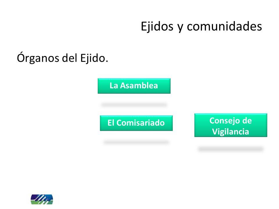 Órganos del Ejido. Ejidos y comunidades La Asamblea El Comisariado Consejo de Vigilancia