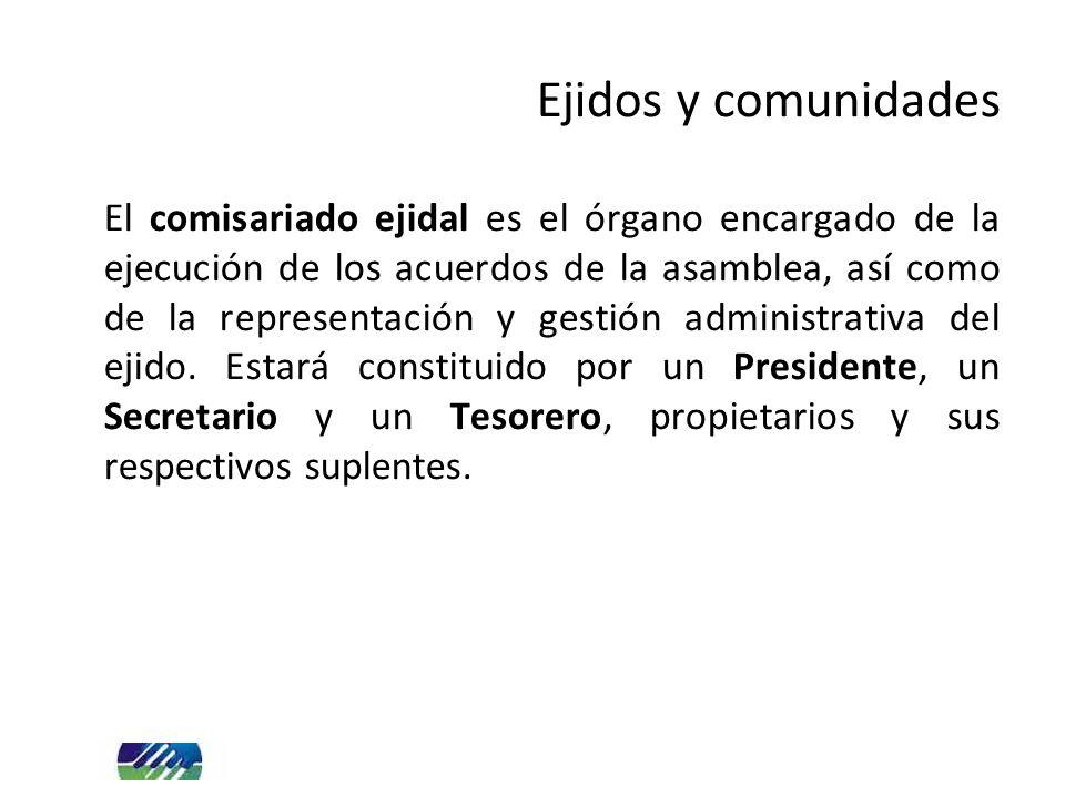 El comisariado ejidal es el órgano encargado de la ejecución de los acuerdos de la asamblea, así como de la representación y gestión administrativa de