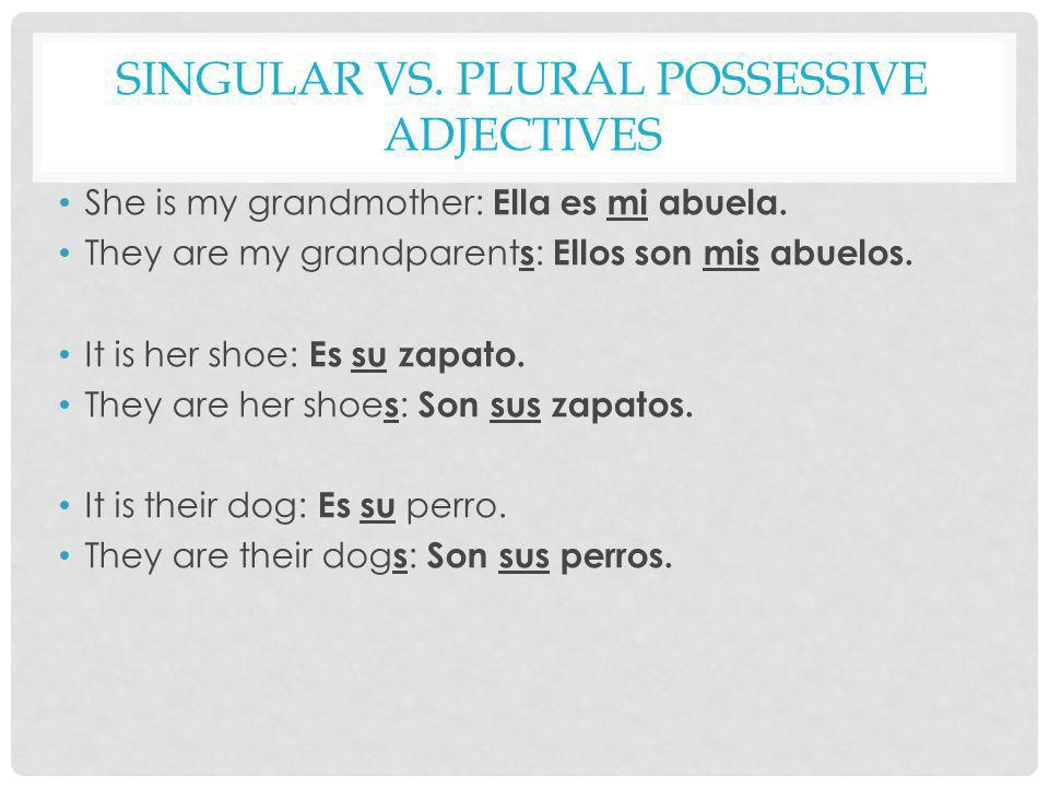 SINGULAR VS. PLURAL POSSESSIVE ADJECTIVES She is my grandmother: Ella es mi abuela. They are my grandparent s : Ellos son mis abuelos. It is her shoe: