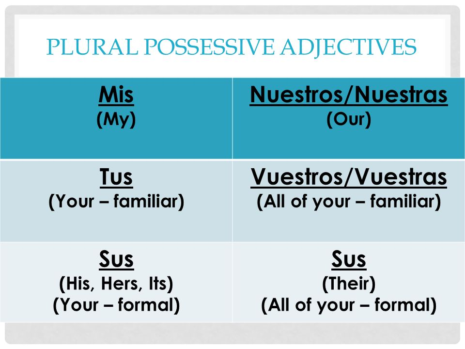 PLURAL POSSESSIVE ADJECTIVES Mis (My) Nuestros/Nuestras (Our) Tus (Your – familiar) Vuestros/Vuestras (All of your – familiar) Sus (His, Hers, Its) (Y