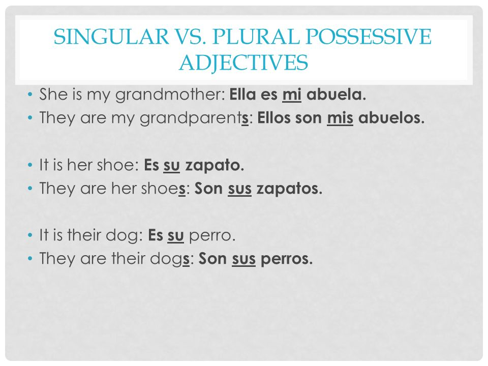 AGREEING POSSESSIVE ADJECTIVES WITH GENDER Nuestro/nuestra and vuestro/vuestra must also agree with the gender of the nouns they describe.