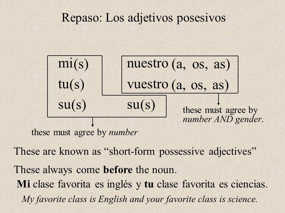 Los Adjetivos Posesivos de Forma Larga míos/asmío/a tuyos/astuyo/a suyos/assuyo/a nuestros/asnuestro/a vuestros/asvuestro/a suyos/assuyo/a Possessive adjectives (long forms) yo Subject pronounSingularPlural tú él ella usted nosotros/as vosotros/as ellos ellas ustedes my, (of) mine your (fam.), (of) yours his, (of) his, its hers, (of) hers, its your (formal) our, (of) ours all of your (fam.), (of) yours) their, (of) theirs all of your (formal), (of) yours)