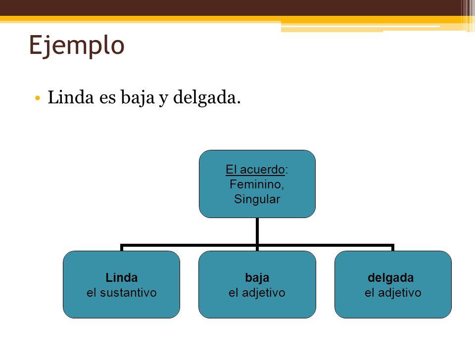 Ejemplo Linda es baja y delgada. El acuerdo: Feminino, Singular Linda el sustantivo baja el adjetivo delgada el adjetivo