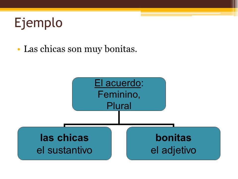 Unas Cositas Más… Adjetivos que terminan en e se usan con sustantivos masculinos y femininos.