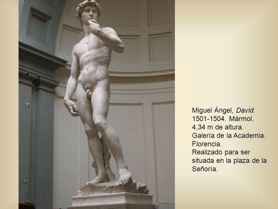 Miguel Ángel, David. 1501-1504. Mármol. 4,34 m de altura. Galería de la Academia. Florencia. Realizado para ser situada en la plaza de la Señoría.