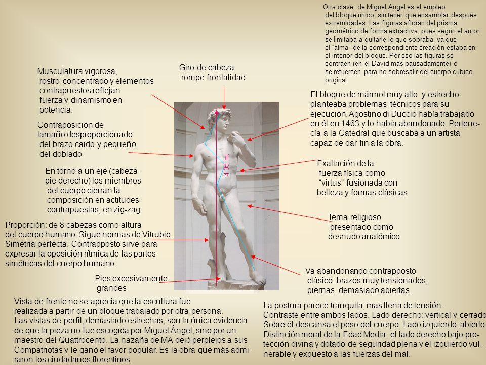 Exaltación de la fuerza física como virtus fusionada con belleza y formas clásicas Contraposición de tamaño desproporcionado del brazo caído y pequeño