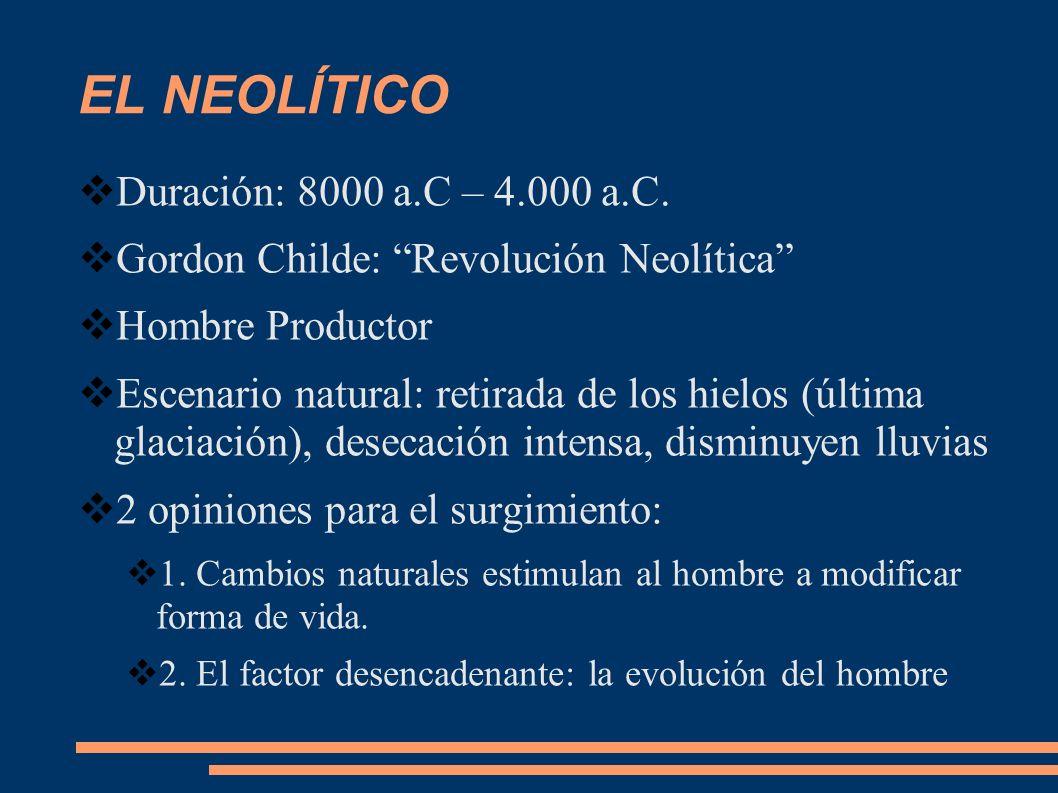 EL NEOLÍTICO Duración: 8000 a.C – 4.000 a.C. Gordon Childe: Revolución Neolítica Hombre Productor Escenario natural: retirada de los hielos (última gl