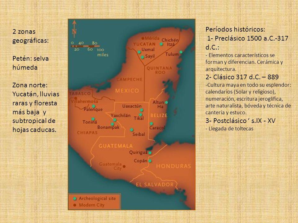 2 zonas geográficas: Petén: selva húmeda Zona norte: Yucatán, lluvias raras y floresta más baja y subtropical de hojas caducas. Períodos históricos: 1