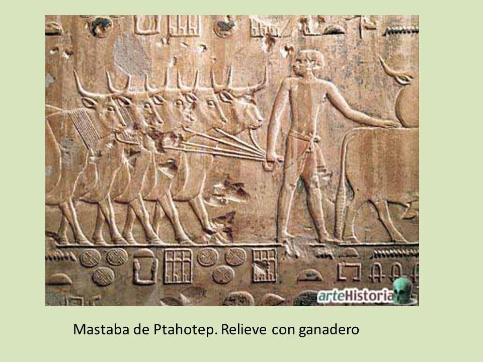Mastaba de Ptahotep. Relieve con ganadero