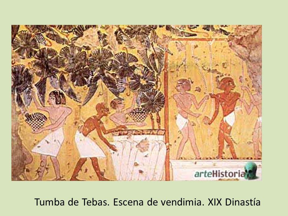 Tumba de Tebas. Escena de vendimia. XIX Dinastía