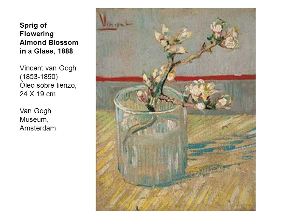 Sprig of Flowering Almond Blossom in a Glass, 1888 Vincent van Gogh (1853-1890) Óleo sobre lienzo, 24 X 19 cm Van Gogh Museum, Amsterdam