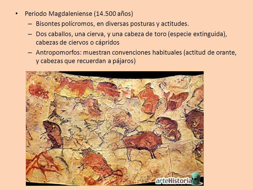 Periodo Magdaleniense (14.500 años) – Bisontes polícromos, en diversas posturas y actitudes. – Dos caballos, una cierva, y una cabeza de toro (especie