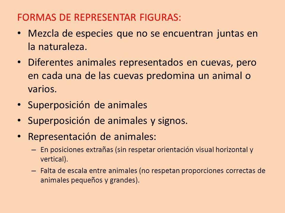FORMAS DE REPRESENTAR FIGURAS: Mezcla de especies que no se encuentran juntas en la naturaleza. Diferentes animales representados en cuevas, pero en c