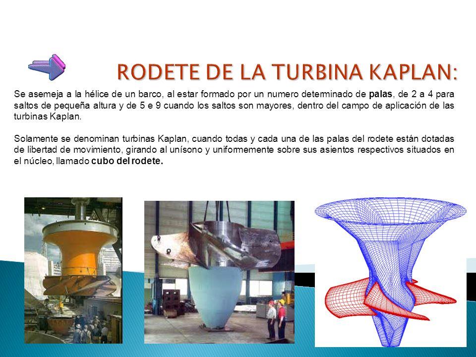 Dado el gran parecido con las turbinas Francis, todos aquellos componentes tienen la misma función y similares características. Tal ocurre con los ele