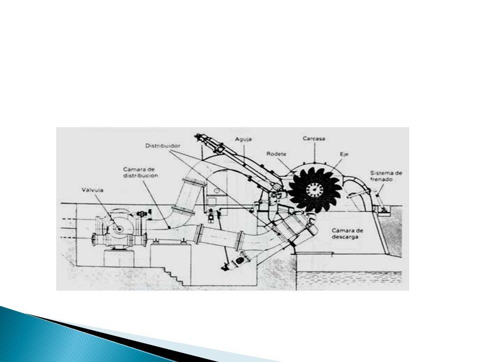 Los componentes esenciales de una turbina Pelton siguiendo la trayectoria del agua a través de la misma son: 1.- Carcasa. 2.- Generador. 3.- Rodete. 4