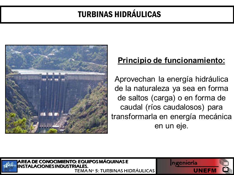Los grupos Bulbo, como parte fundamental de algunas centrales minihidráulicas y maremotrices, no son más que un tipo especial de turbina hélice, capaces de aprovechar saltos de pequeño desnivel, pero de gran caudal.