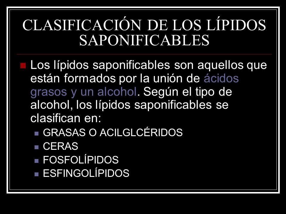 CLASIFICACIÓN DE LOS LÍPIDOS SAPONIFICABLES Los lípidos saponificables son aquellos que están formados por la unión de ácidos grasos y un alcohol. Seg