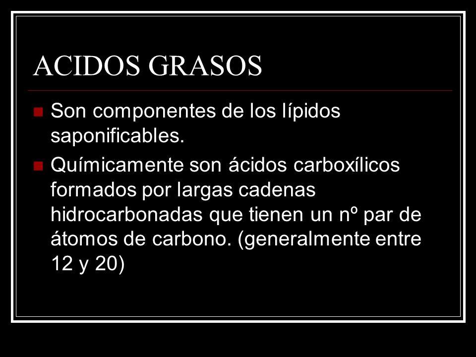 ACIDOS GRASOS Son componentes de los lípidos saponificables. Químicamente son ácidos carboxílicos formados por largas cadenas hidrocarbonadas que tien