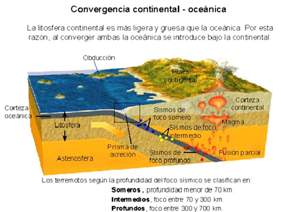 ORÓGENO MARGINAL Cuando una placa oceánica subduce bajo una placa continental se forman cordilleras pericontinentales (o perioceánica u orógenos marginales).
