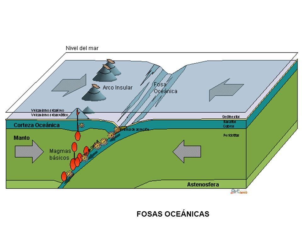 FOSAS OCEÁNICAS