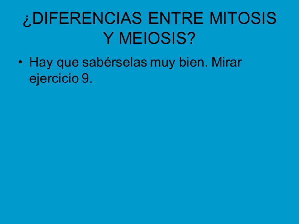 ¿DIFERENCIAS ENTRE MITOSIS Y MEIOSIS? Hay que sabérselas muy bien. Mirar ejercicio 9.