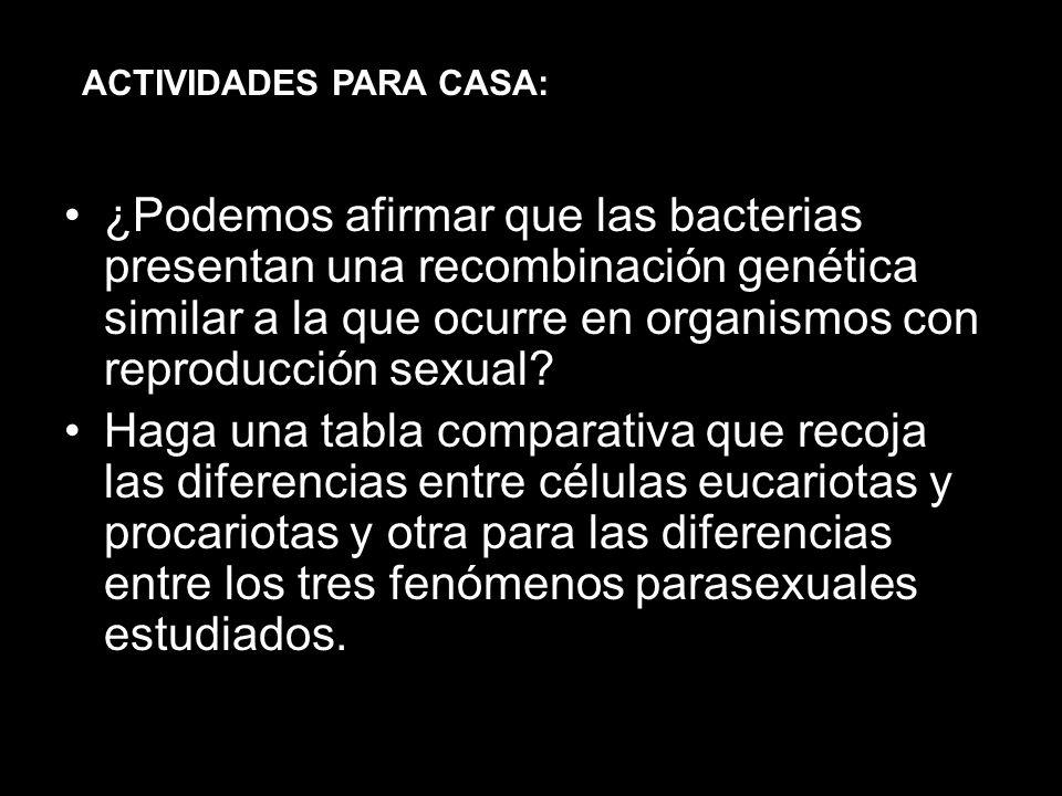 ¿Podemos afirmar que las bacterias presentan una recombinación genética similar a la que ocurre en organismos con reproducción sexual? Haga una tabla
