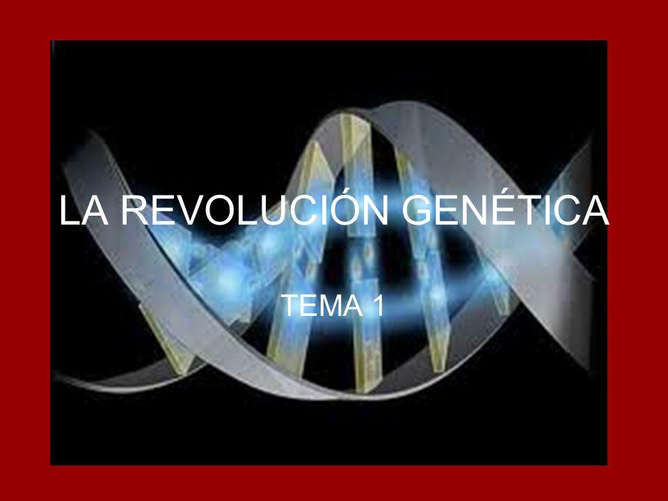 LA REVOLUCIÓN GENÉTICA TEMA 1