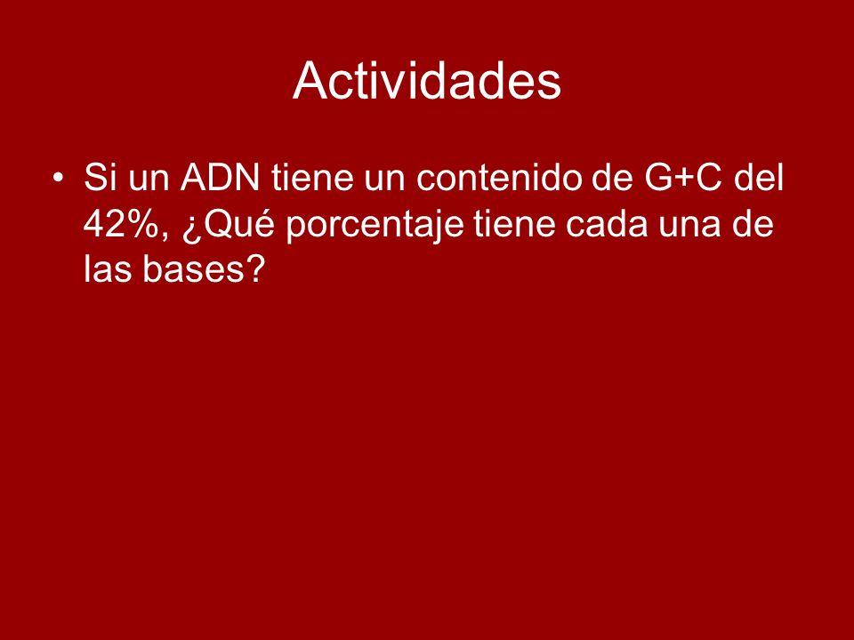 Actividades Si un ADN tiene un contenido de G+C del 42%, ¿Qué porcentaje tiene cada una de las bases?