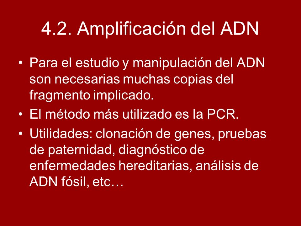 4.2. Amplificación del ADN Para el estudio y manipulación del ADN son necesarias muchas copias del fragmento implicado. El método más utilizado es la