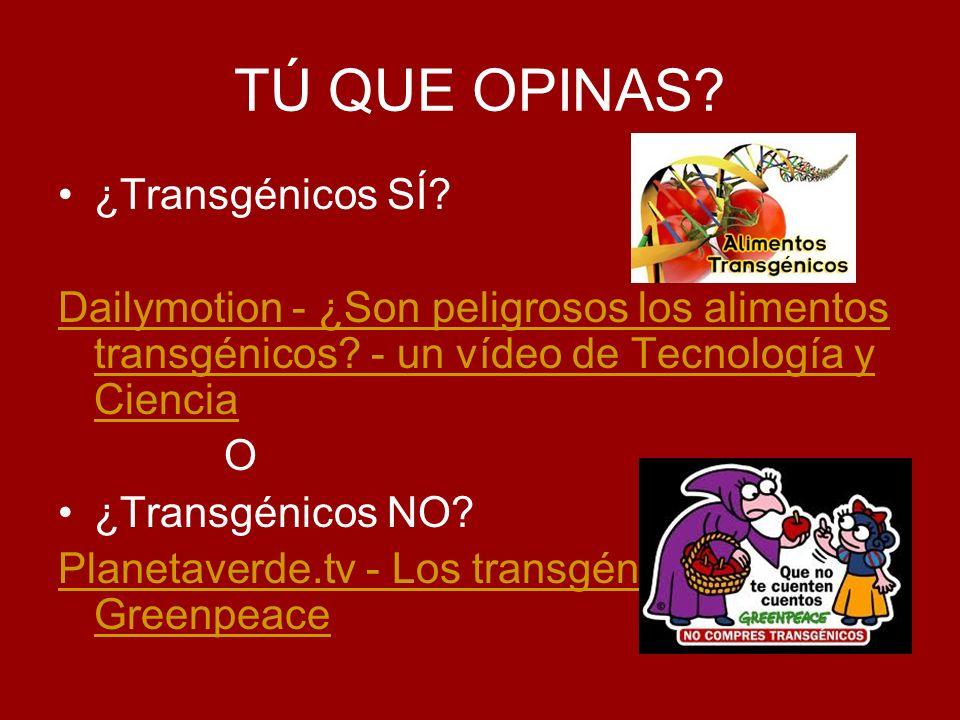 TÚ QUE OPINAS? ¿Transgénicos SÍ? Dailymotion - ¿Son peligrosos los alimentos transgénicos? - un vídeo de Tecnología y Ciencia O ¿Transgénicos NO? Plan