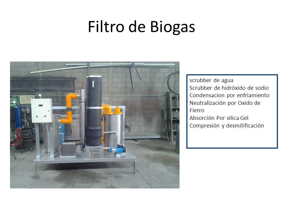 Filtro de Biogas scrubber de agua Scrubber de hidróxido de sodio Condensacion por enfriamiento Neutralización por Oxido de Fierro Absorción Por silica