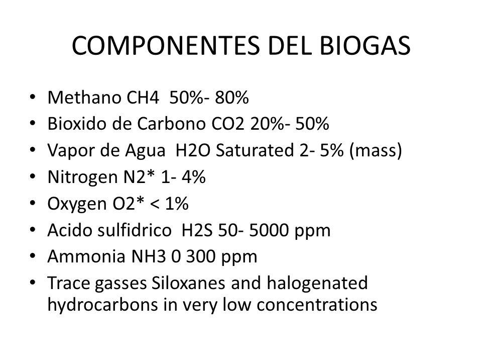 COMPONENTES DEL BIOGAS Methano CH4 50%- 80% Bioxido de Carbono CO2 20%- 50% Vapor de Agua H2O Saturated 2- 5% (mass) Nitrogen N2* 1- 4% Oxygen O2* < 1