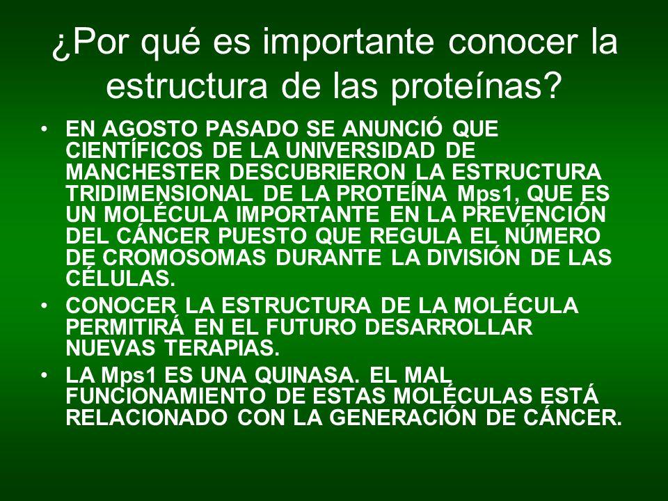 ¿Por qué es importante conocer la estructura de las proteínas? EN AGOSTO PASADO SE ANUNCIÓ QUE CIENTÍFICOS DE LA UNIVERSIDAD DE MANCHESTER DESCUBRIERO
