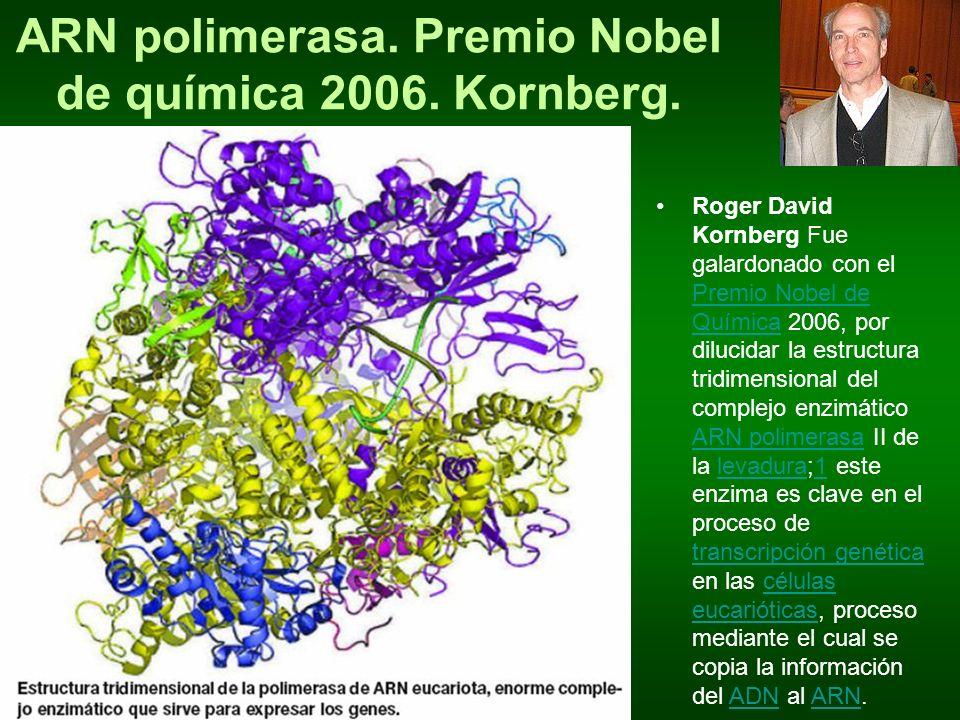 ARN polimerasa. Premio Nobel de química 2006. Kornberg. Roger David Kornberg Fue galardonado con el Premio Nobel de Química 2006, por dilucidar la est