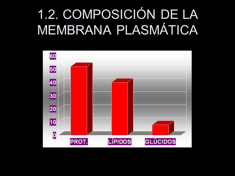 1.2. COMPOSICIÓN DE LA MEMBRANA PLASMÁTICA
