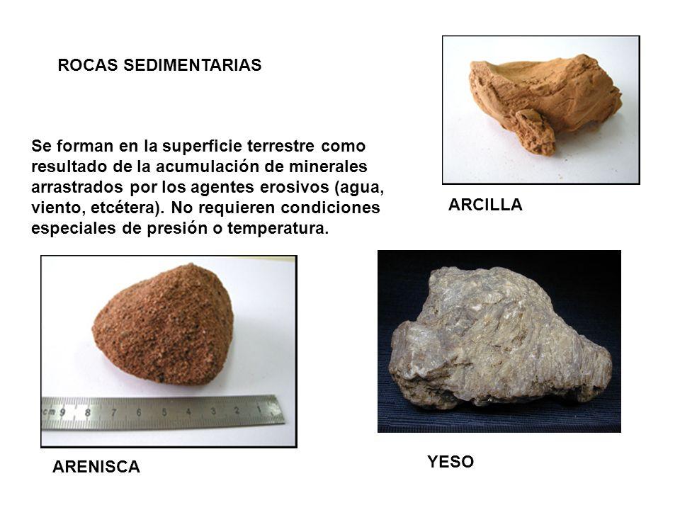 ROCAS SEDIMENTARIAS Se forman en la superficie terrestre como resultado de la acumulación de minerales arrastrados por los agentes erosivos (agua, vie