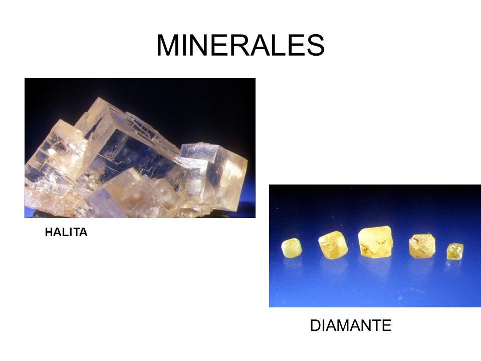 MINERALES DIAMANTE HALITA